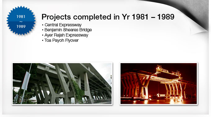 Project in Year 1981 to 1989